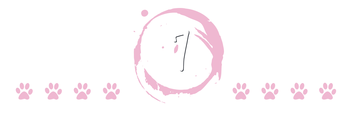 Pets Day, Saturday, October 7th at Butimanu Shelter
